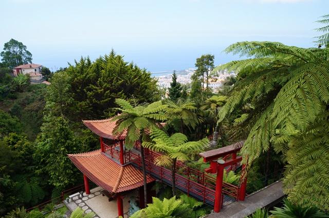 Madeira_039