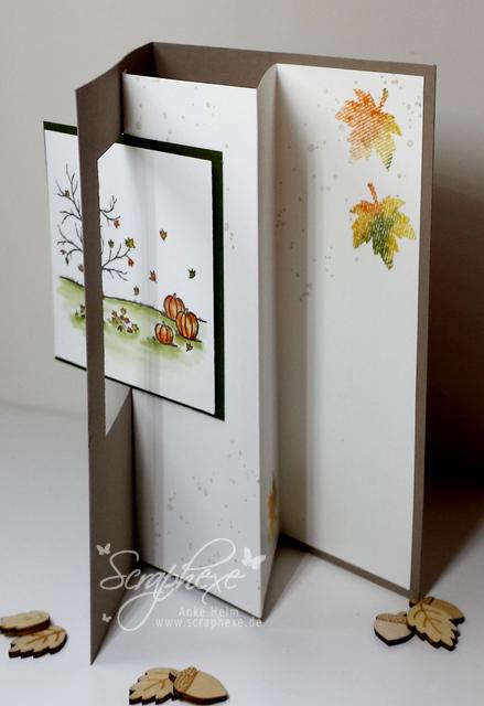 Kleiner Herbstgruß, scraphexe