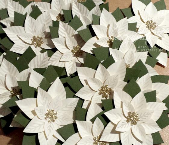 Adventskalender, Festliche Blüte, scraphexe
