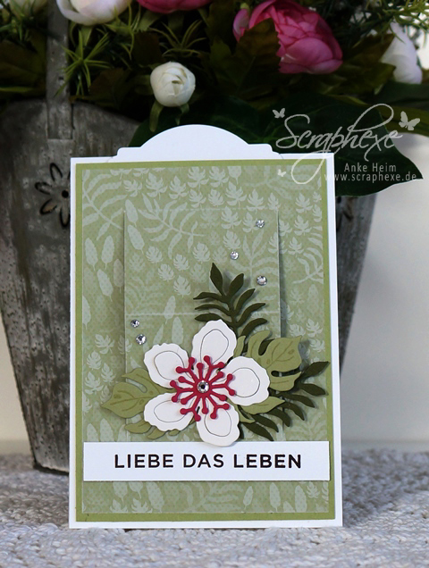Botanischer Garten, Ziehkarte mit Anleitung, scraphexe.de